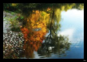 autumn reflection by built-wid-in