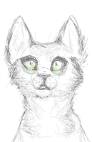 have a scribbly cat idk by altarias