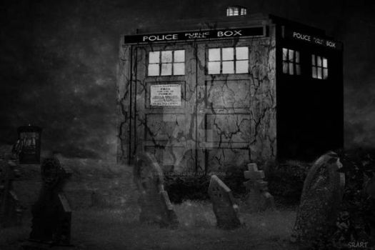 The Doctor's Tomb by Shellsworld