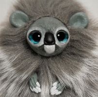 Koala Furry Creature by RamalamaCreatures
