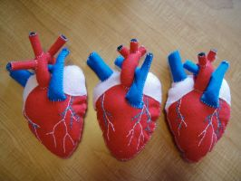 Anatomical Heart Plush by alicetwasbrillig
