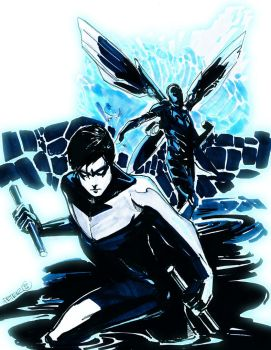 nightwing an blue bettle con by Peter-v-Nguyen