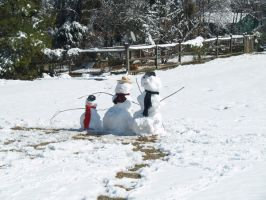 Snow Family by Irie-Stock
