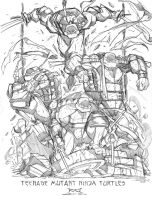 Commish Sketch 43 TMNT by RobDuenas