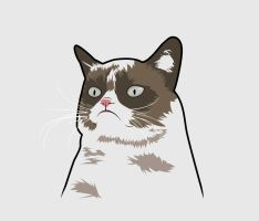 Grumpy Cat by ImWithStoopid13