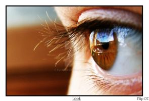 Eye by FLixter