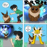 The Eevees 3: Jolteon used... by RioDiGennaio