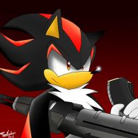 Shadow the Hedgehog by VagabondWolves
