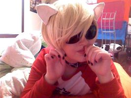 Kitten Dave Strider by SnowFallAtTwilight