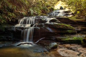 Leura Cascades II by Aztil