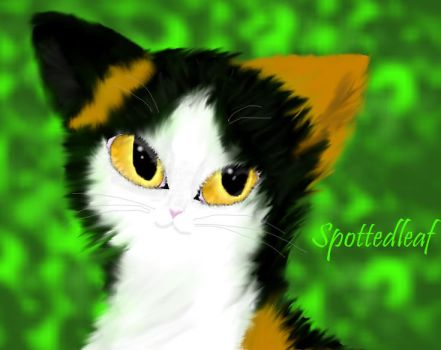 Spottedleaf by BluElixir