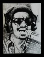 Stevie Wonder by SekayianikA
