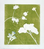 Floral Monotype 2 of 6 by designsbykari