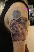 cat portrait by tattooneos