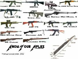 Know Your Rifles by tenaciouscree