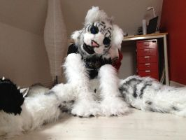 Fursuit partial 3/4 is done ^^, by WithCandyDancing