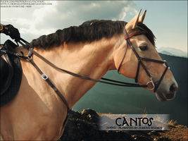 Cantos by FamousShamus109
