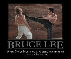 Bruce Lee Vs Chuck Norris by MexPirateRed
