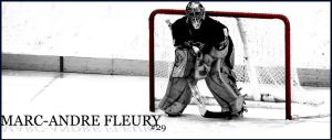 marc-andre fleury by dystonia