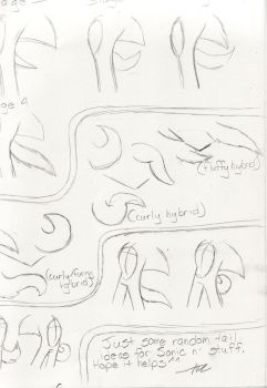 .:Sonic Tail Sheet:. by AzureDreamrealm