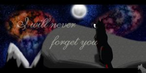 I will never forget you... by rymae