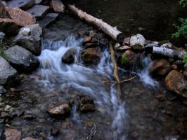 Day in Millcreek Canyon by corguitarist