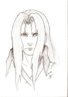 Sephiroth -Commission 56- by raquel-cobi