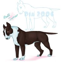Female Bull Terrier by tailfrost