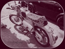 Kreidler with leopard print. by ASFmaggot
