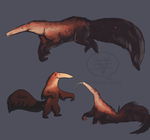 Galactic Anteater by comixqueen