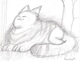 Fluffy Cat by remanlongtail