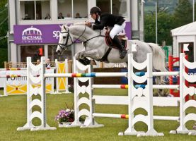 Jumping stock 46 by Kennelwood-Stock