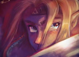 Warrior Zelda Closeup by lord-phillock