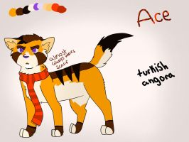 ace ref i guess by ezlimits