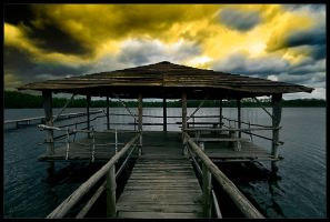 fancy painter by werol