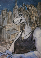 Up All Night .ACEO by silverybeast