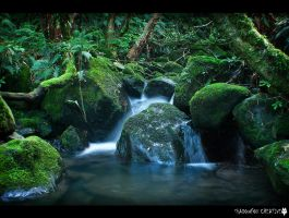 Nichols Creek 4 by shadowfoxcreative