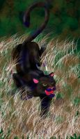 Panther by FireWolfWitch