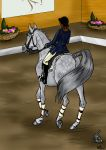 Sabra ODE Dressage by Louvan