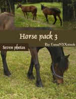 Horse pack - 03 by LunaNYXstock