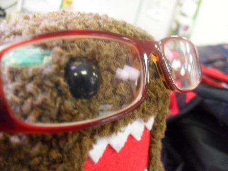 Domo stole my glasses... by urgirl4ever