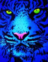 BLUE TIGER by JJShaver