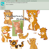 Q+A 62: Pelt Change by Ask-FlameTail