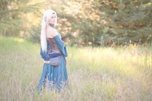 Dragon Age Origins: Journey by HayleyElise