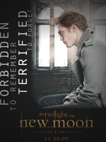 New Moon Poster - Edward by jessdcma