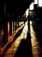 morning shadows by laurowinck