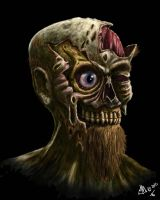 DECAY ZOMBIE CONCEPT by twistedmentality