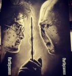 Harry Potter by Zaannoox