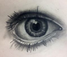 I've Never Drawn A Realistic Eye Before by howlingwolf142