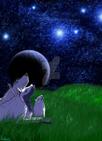A Stary Night for Wolves by DireDragoness